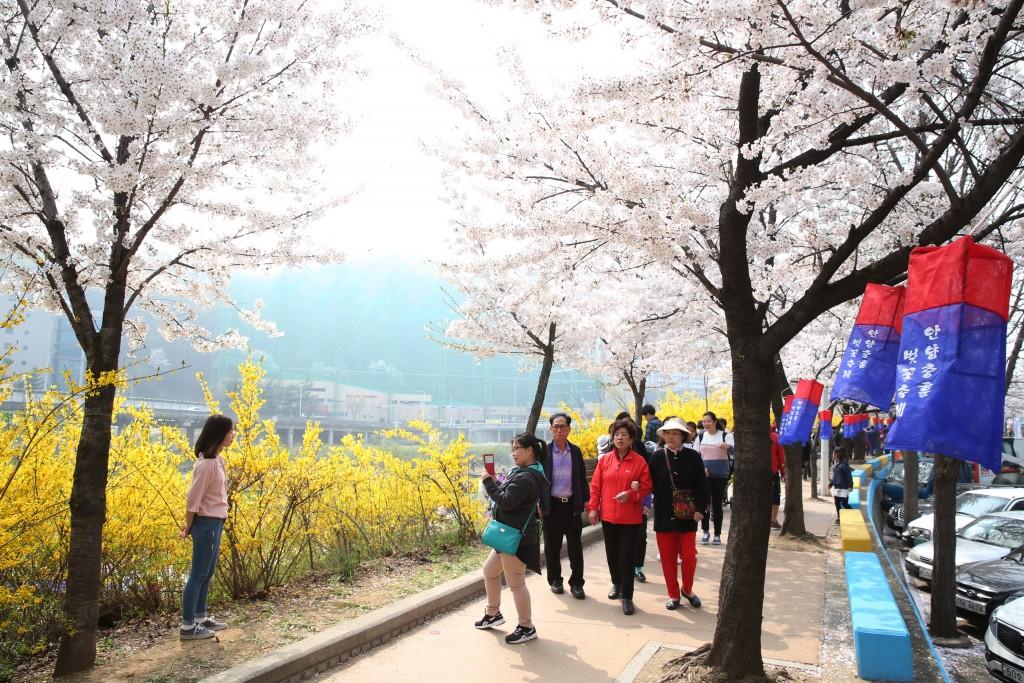 벚꽃놀이를 즐기는 사람들