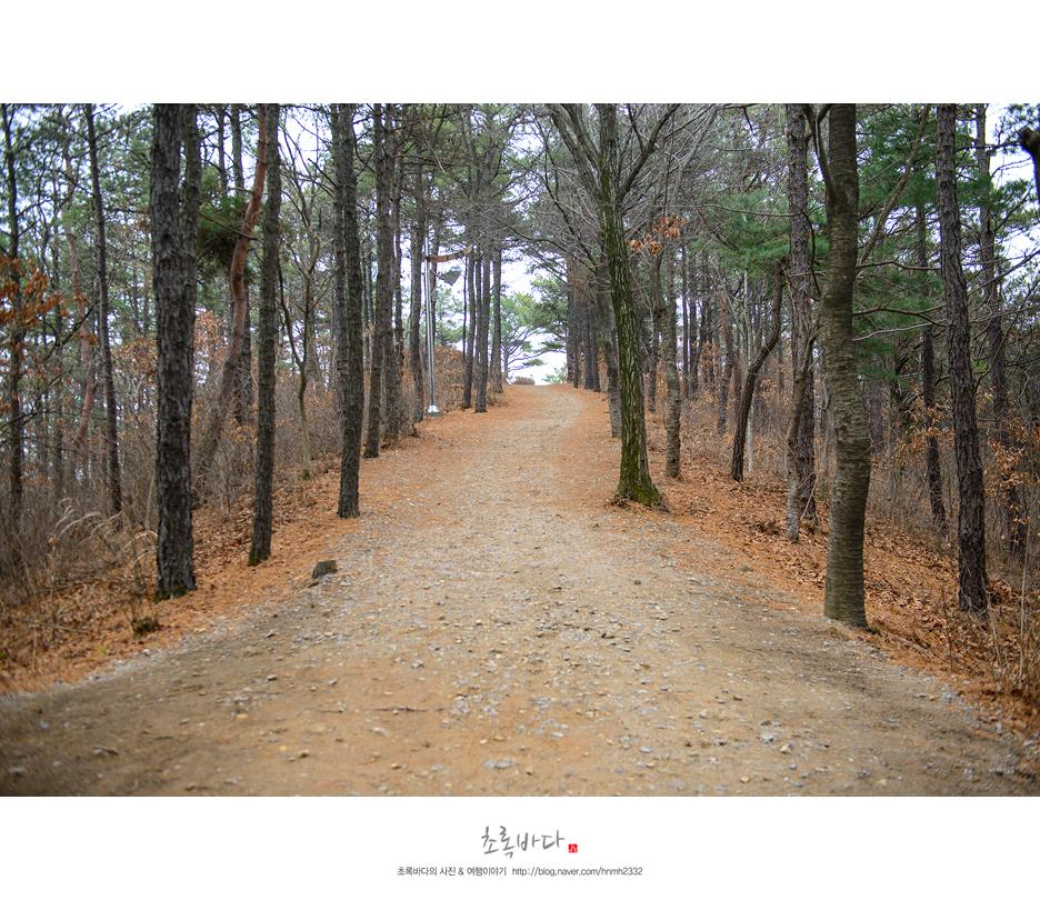 김포조각공원 안 산책로