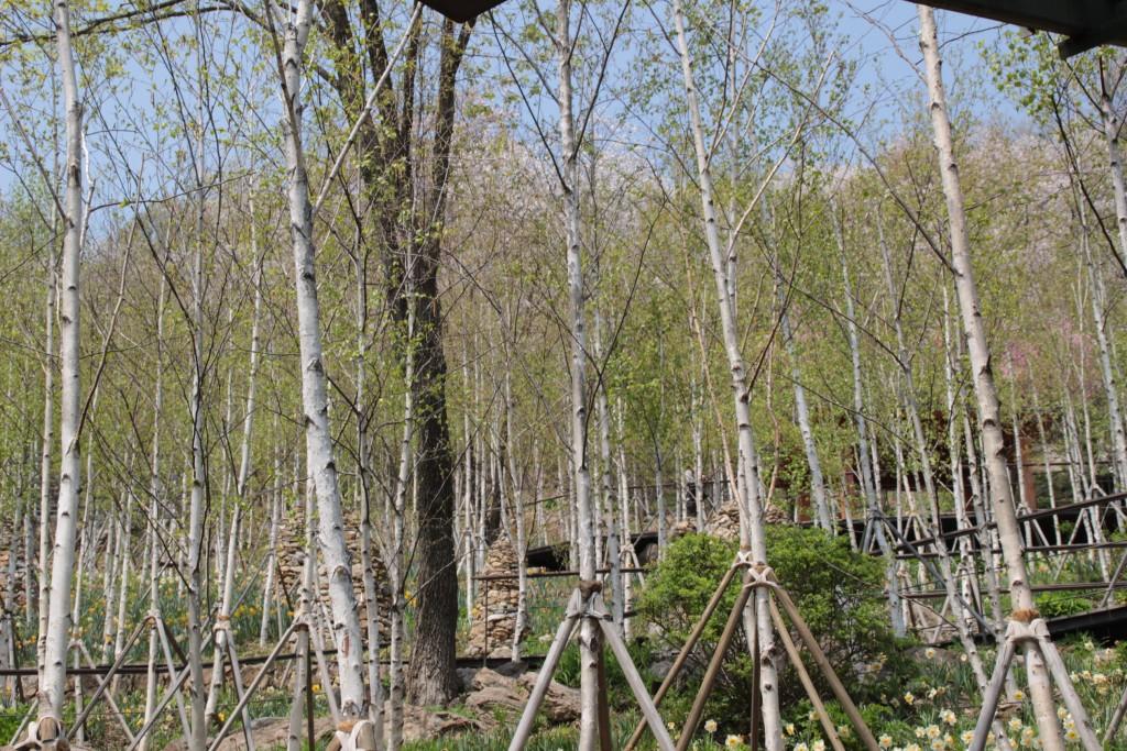 광쥬화담숲,곤지암도자축제 274