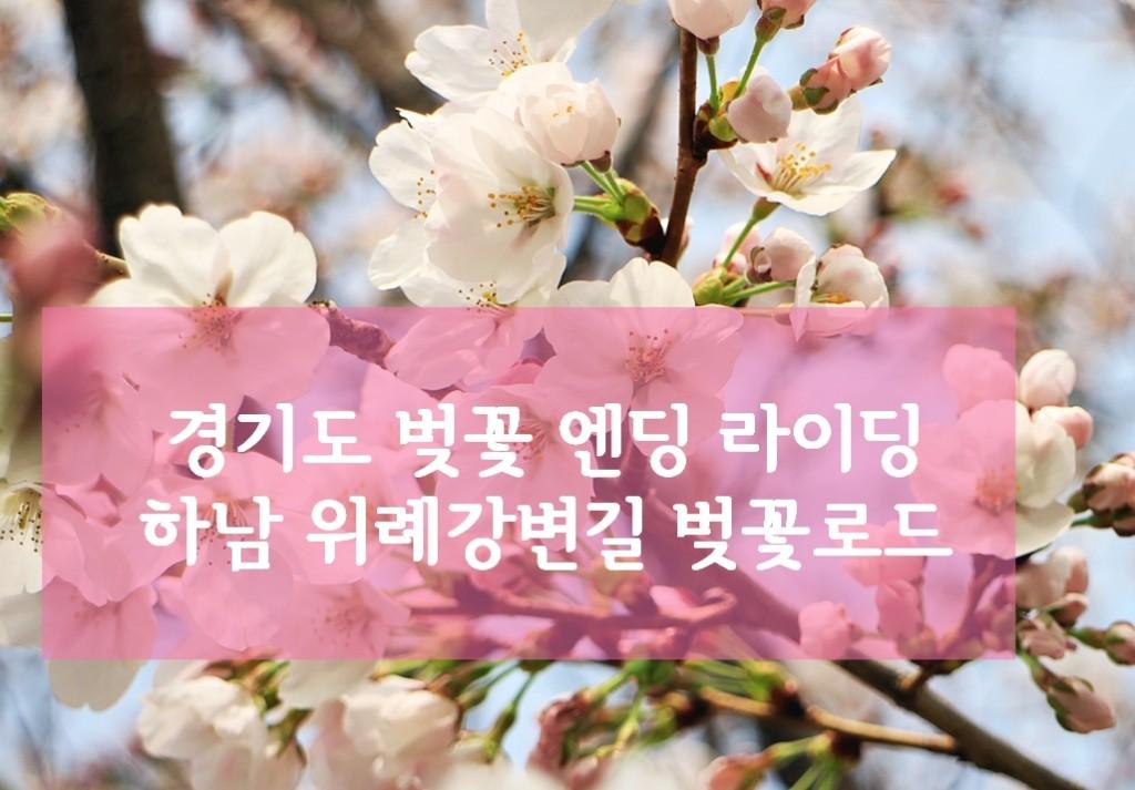 벚꽃라이딩
