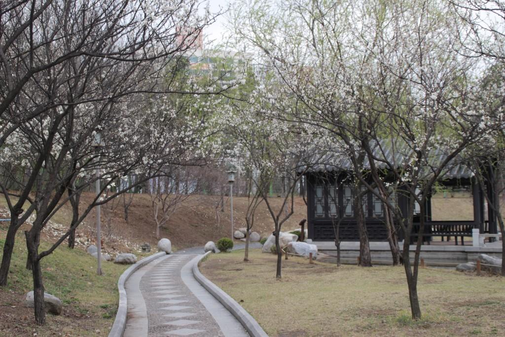 수원하이텍고,월화원,반야사,나혜석거리,곰탕 176