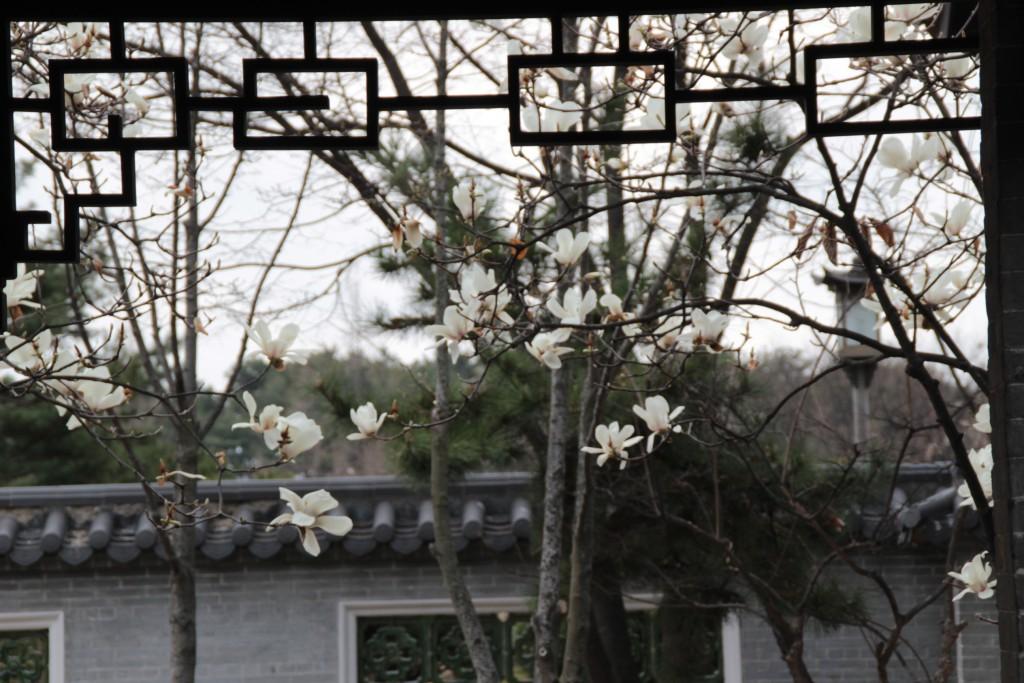 수원하이텍고,월화원,반야사,나혜석거리,곰탕 212