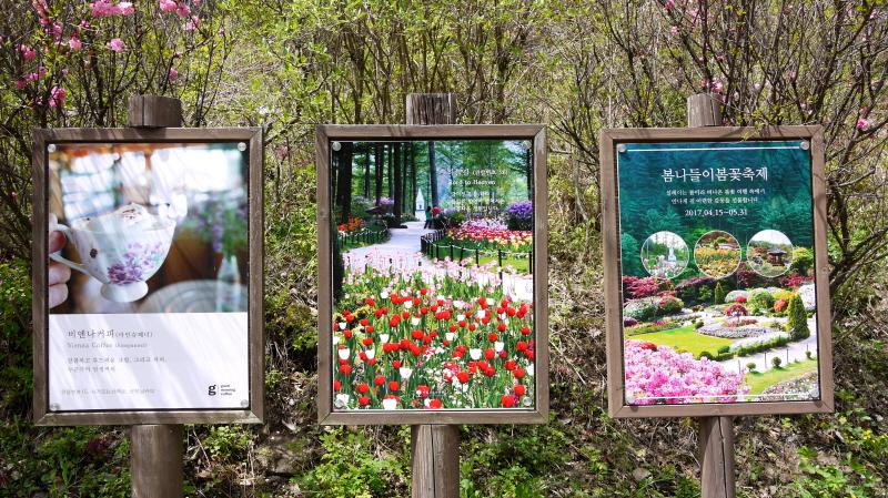 가평 '아침고요수목원' 봄나들이 봄꽃축제 (~5.31)