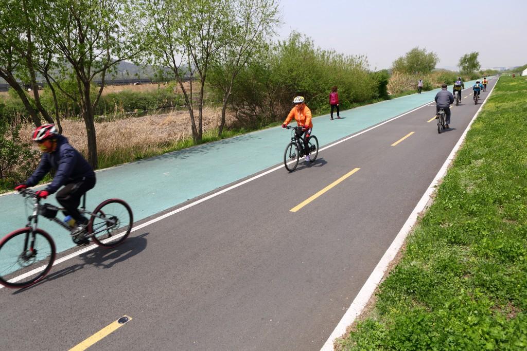 성남 탄천 생태하천 자전거 길