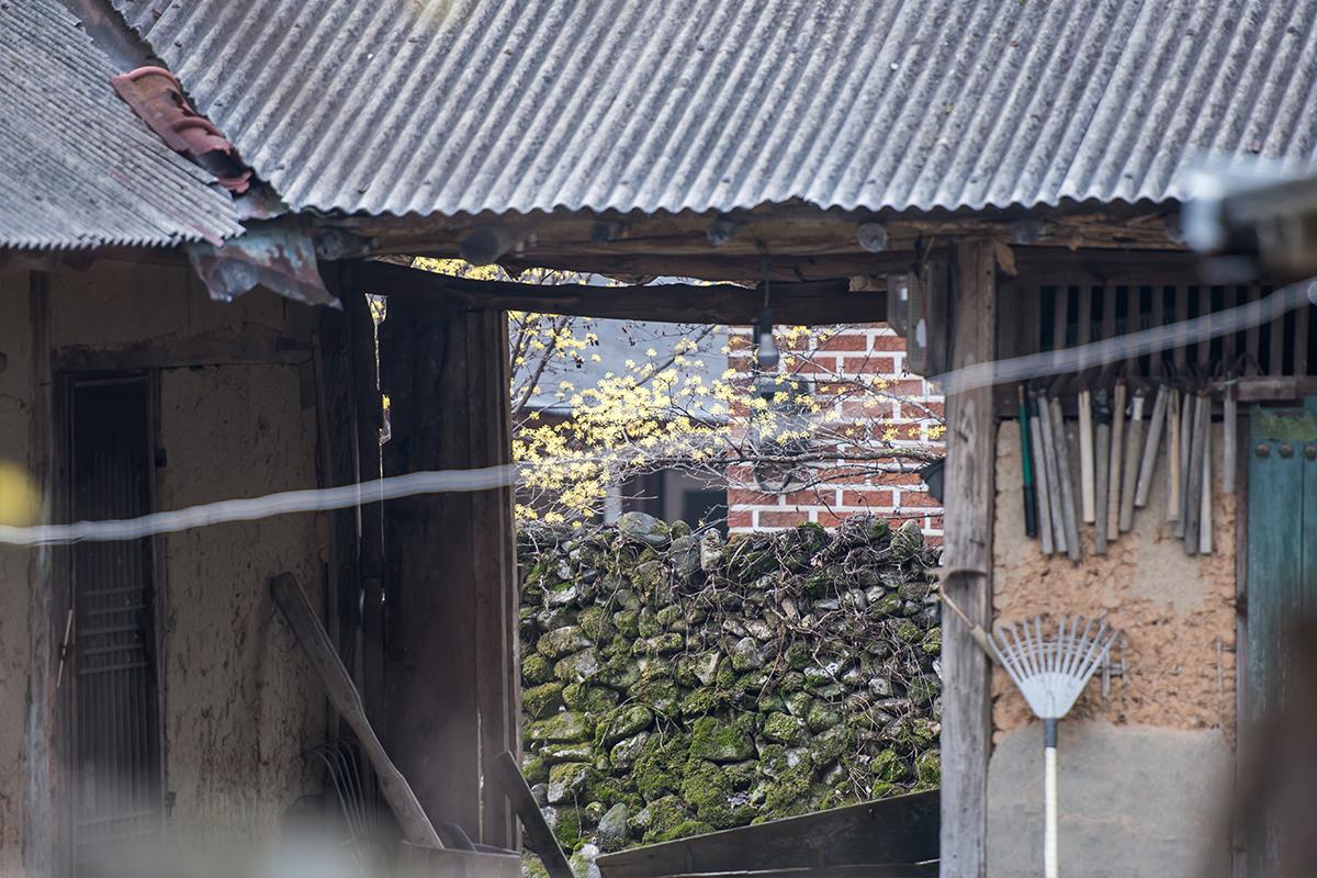 16 경사리마을