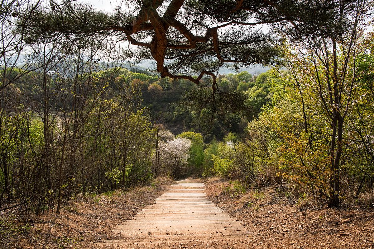 31 곤지암도자공원