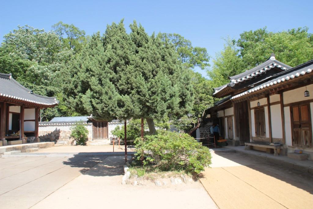 건릉제향식,용주사,융릉,수원행궁,아이파크미술관 191