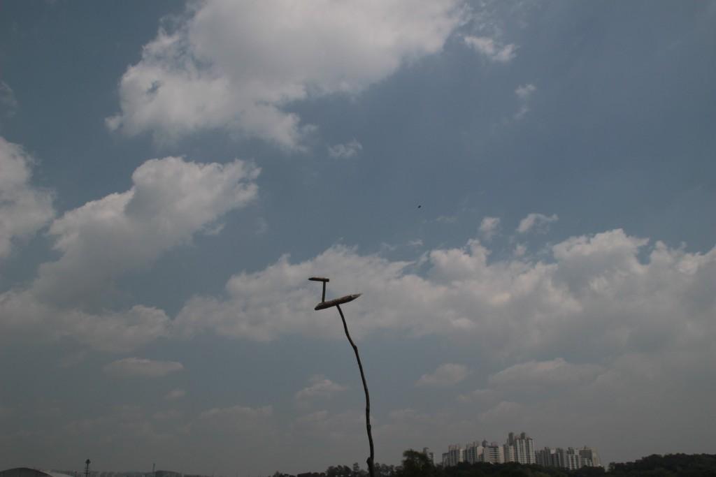 당수동보리밭,원드컵경기 006