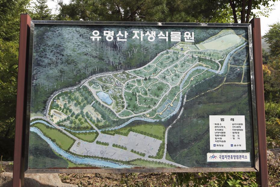 유명산자연휴양림_009