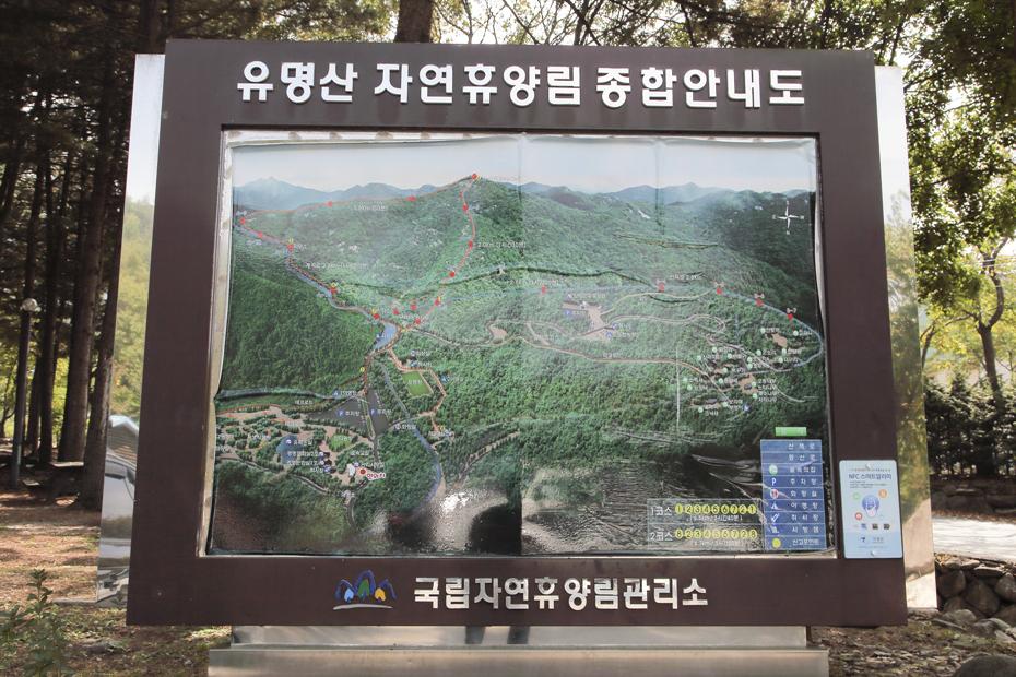유명산자연휴양림_015