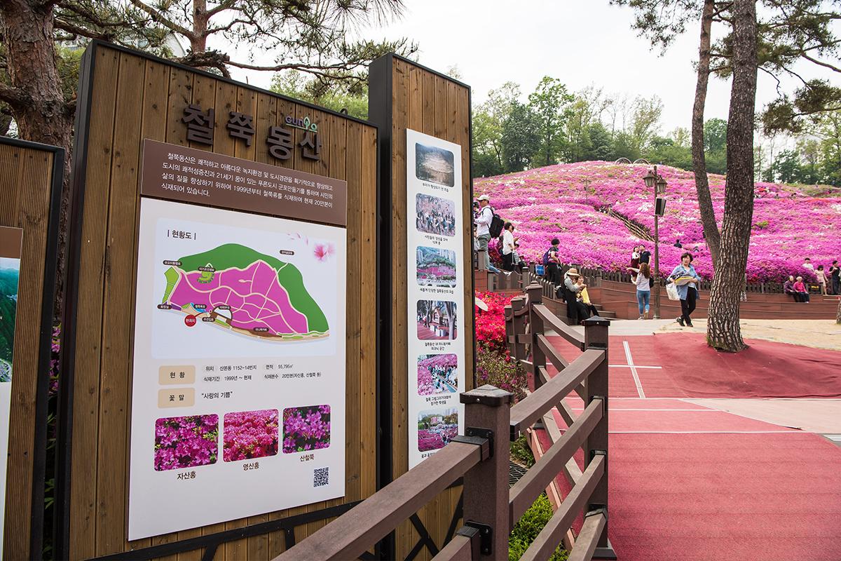04 군포철쭉공원