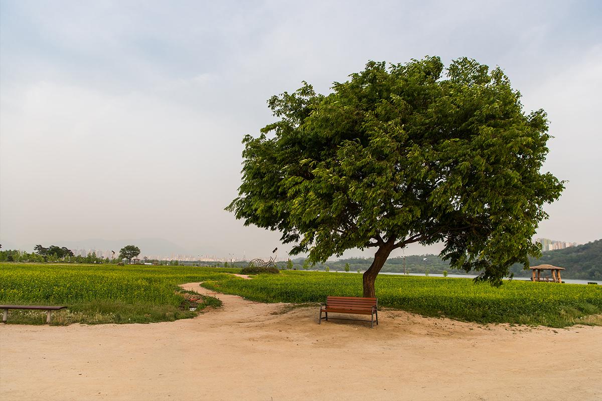 09 구리한강시민공원