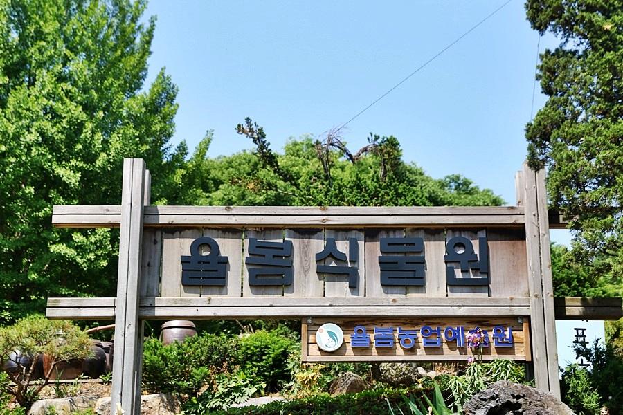 경기도 광주 가볼만한곳 가족 소풍 여행 율봄식물원