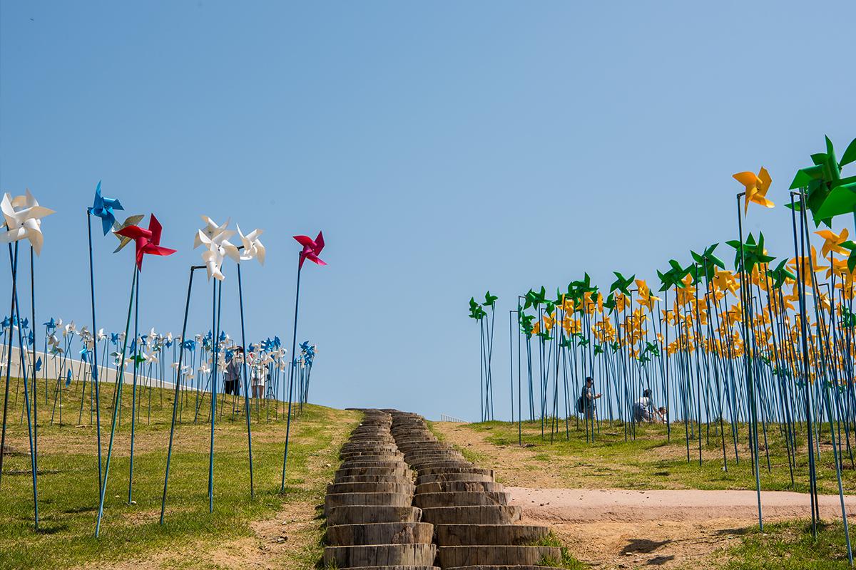 11 평화누리공원