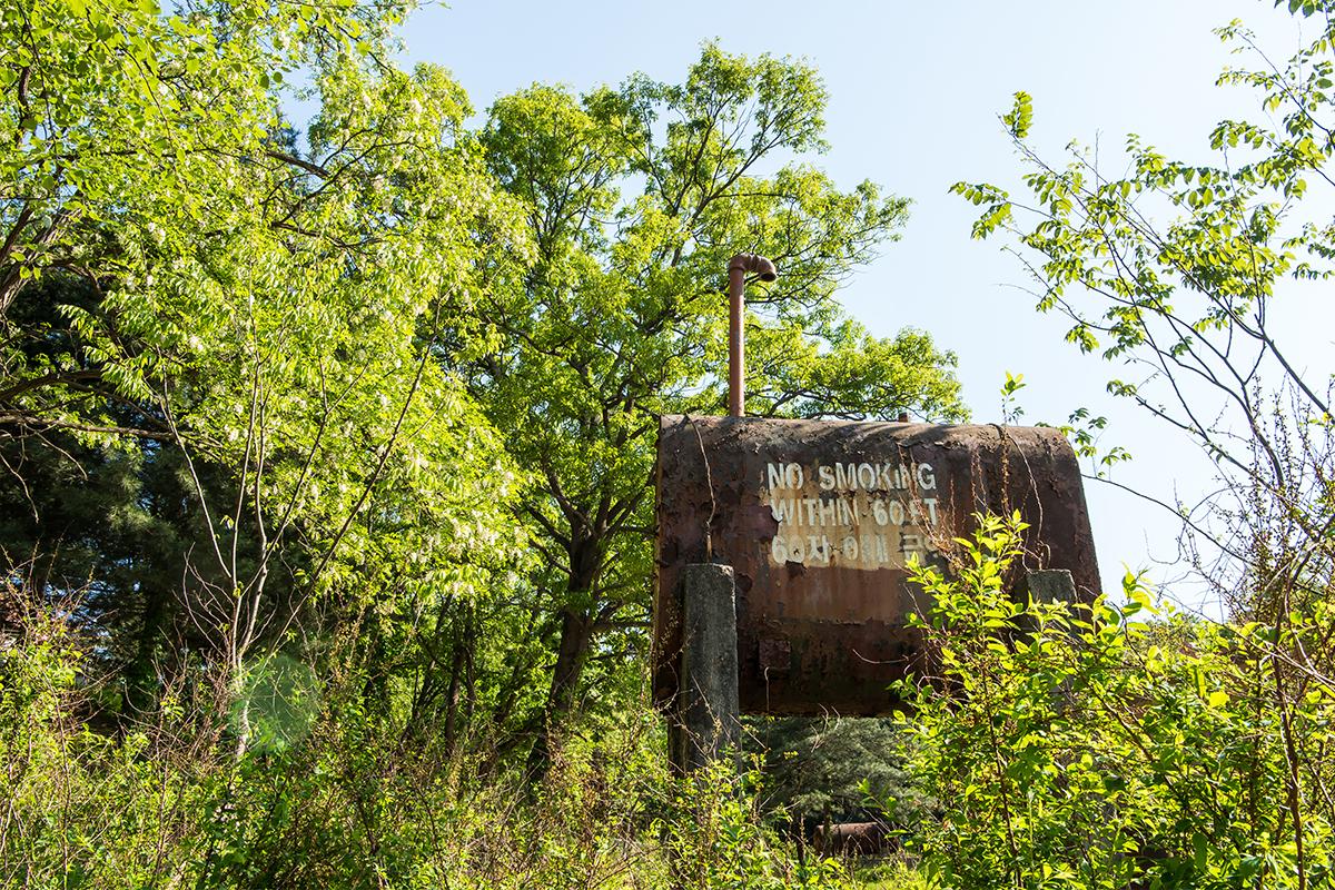 16 DMZ캠프그리브스