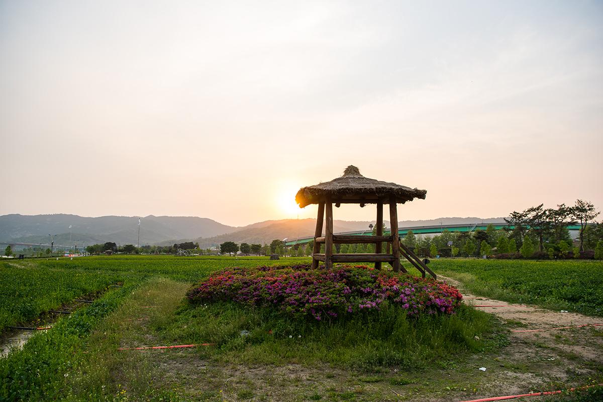 17 구리한강시민공원