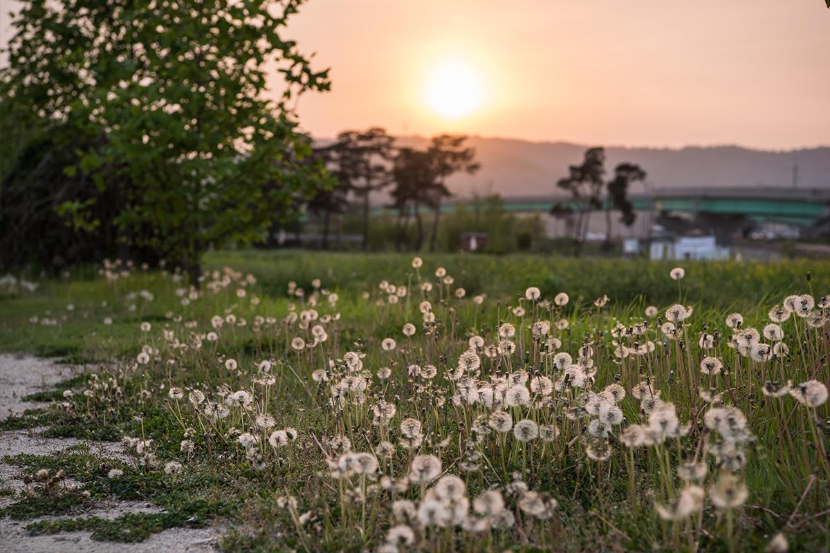19 구리한강시민공원