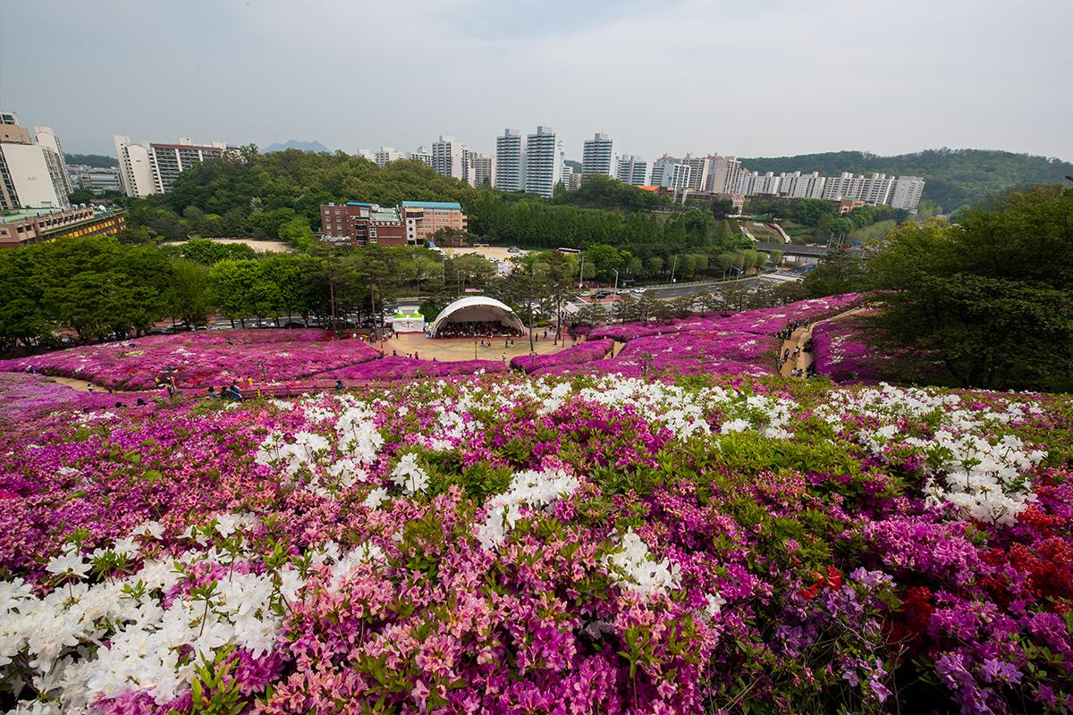 19 군포철쭉공원