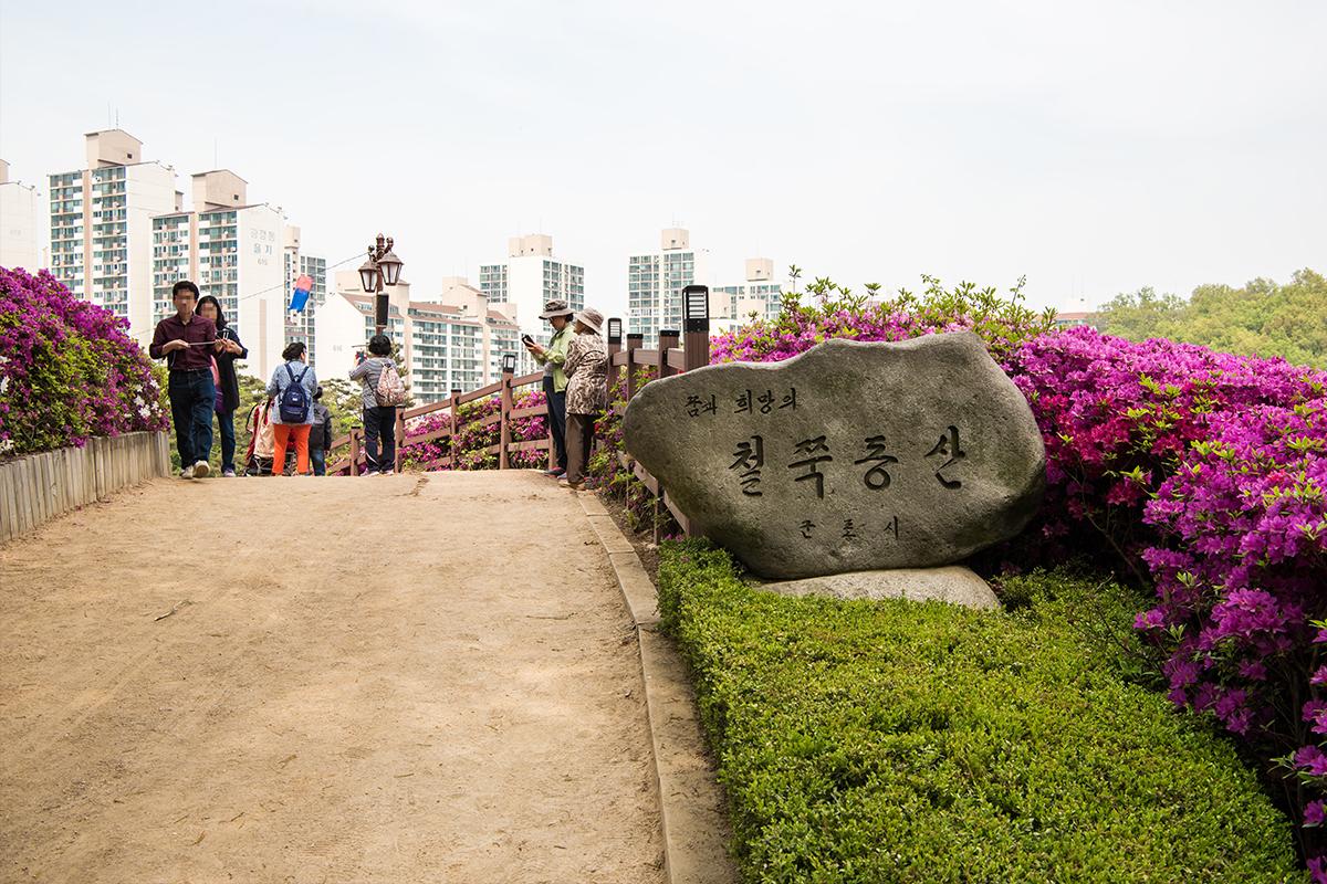 21 군포철쭉공원