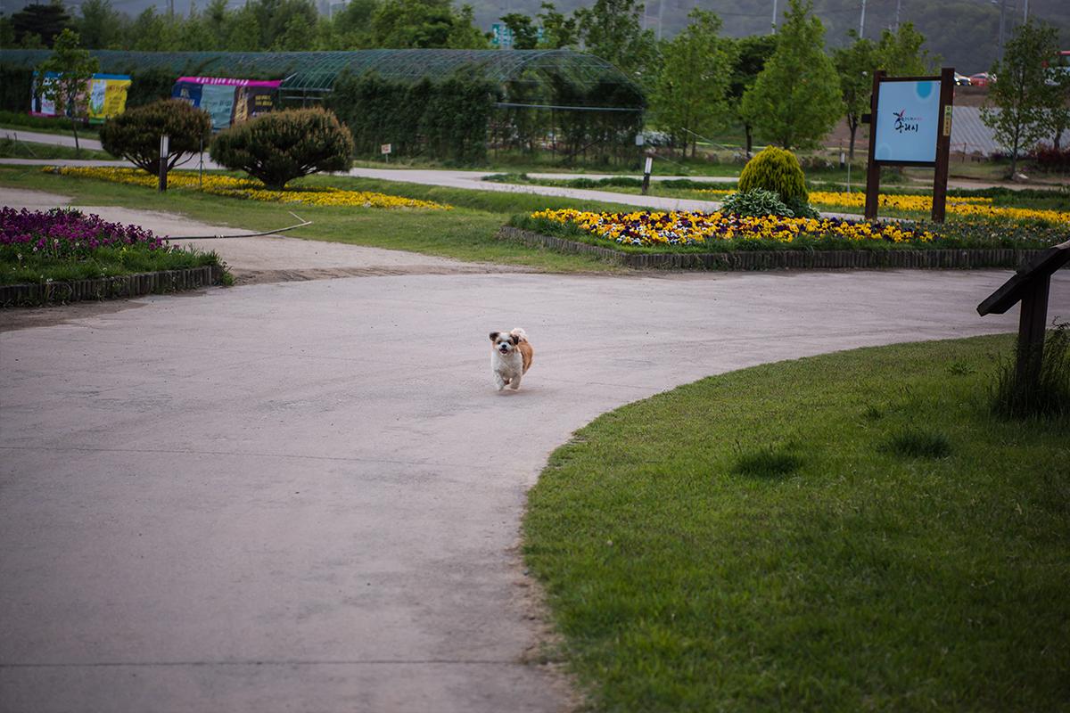 28 구리한강시민공원