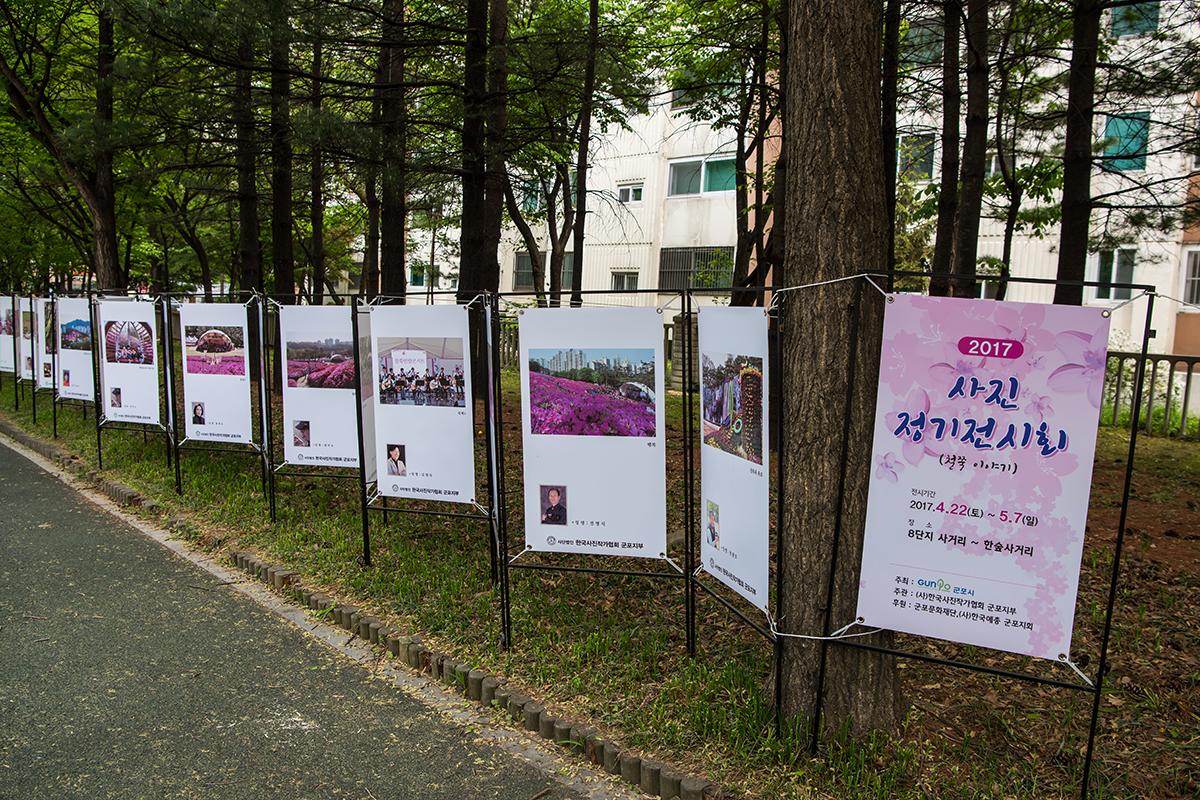 29 군포철쭉공원