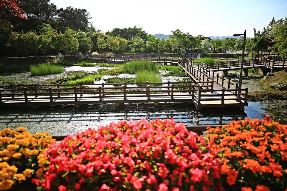 자연학습공원 풍경