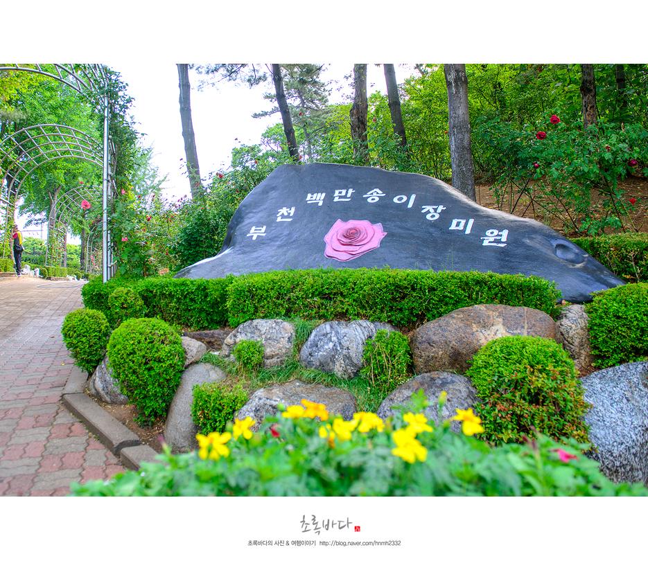 부천백만송이장미축제,백만송이장미원은 꽃대궐은 꽃대궐~