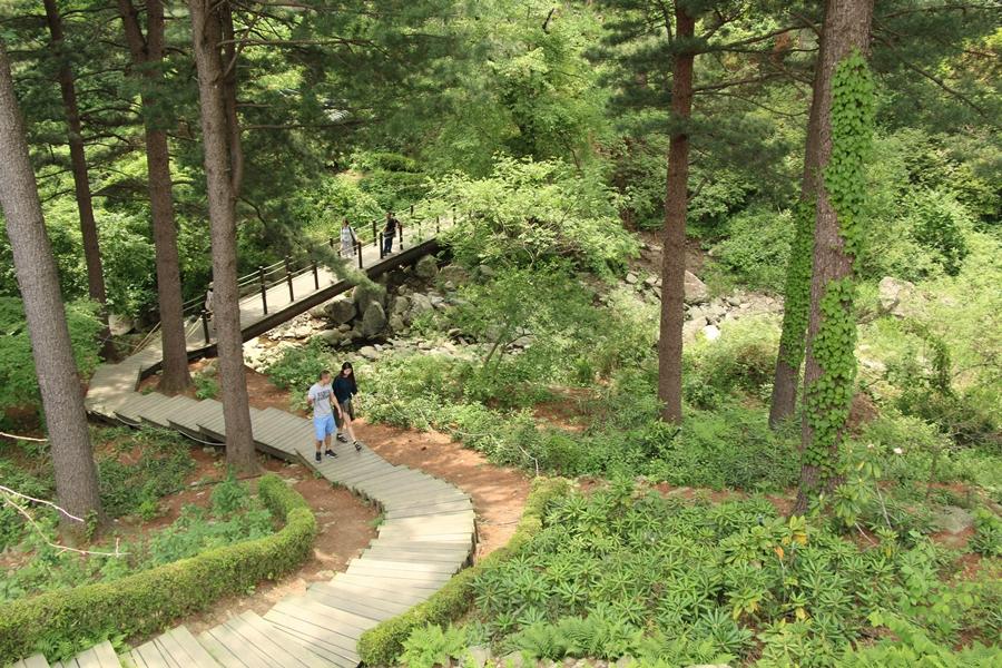 아침고요수목원 산책길 풍경
