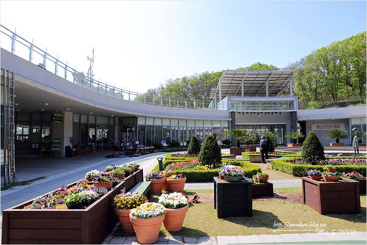 성남여행- 피크닉가기 딱좋은 신구대식물원
