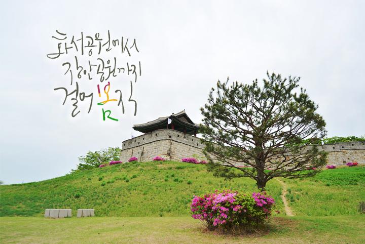 경기도 수원 추천여행 – 마음속의 경기도 172. 장안공원