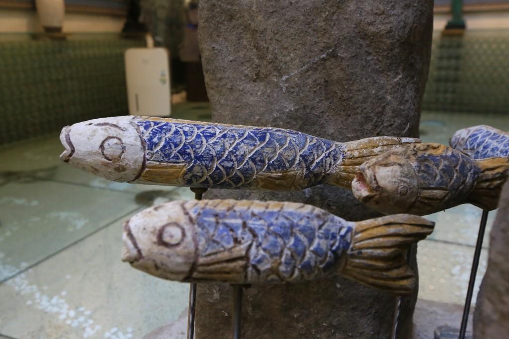 물고기모양의 전시품