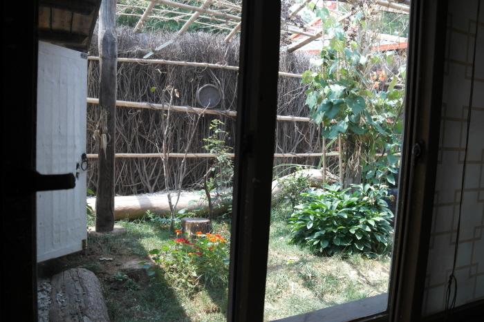 창밖으로 보이는 정원 모습