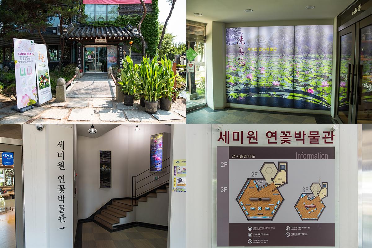 연꽃박물관의 모습들