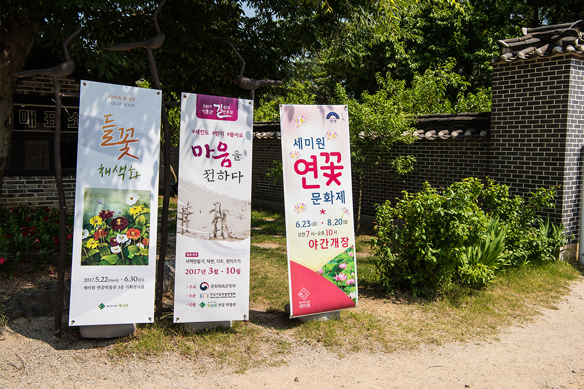 들꽃 채색화, 마음을 전하다, 세미원 연꽃 문화제 입간판들