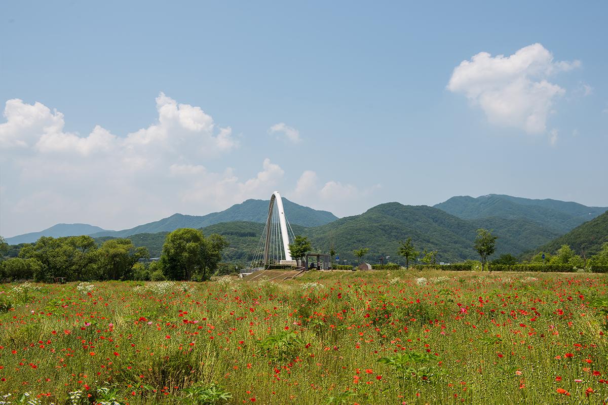 풀꽃정원과 다리가 보이는 풍경