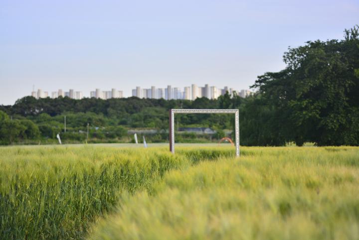 당수동 시민농장