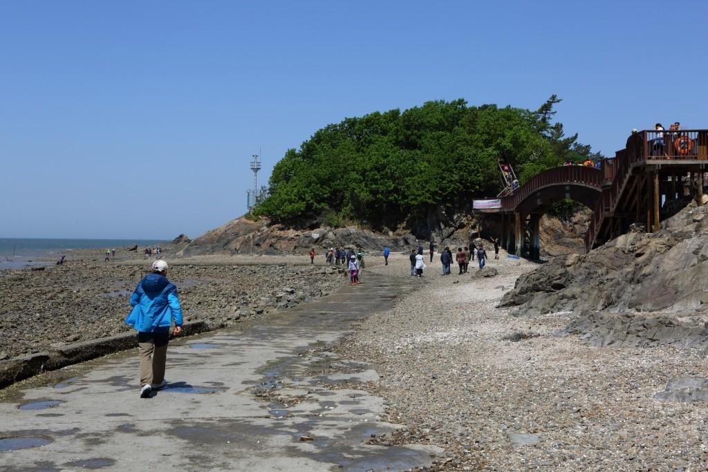 대부해솔길을 걷는 사람들
