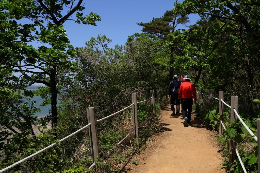 대부해솔길 바다가 보이는 숲길을 걷는 사람들