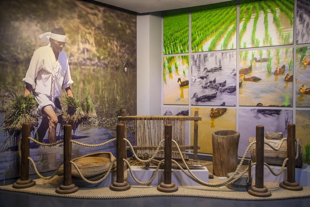 친환경농업박물관 내부 모습