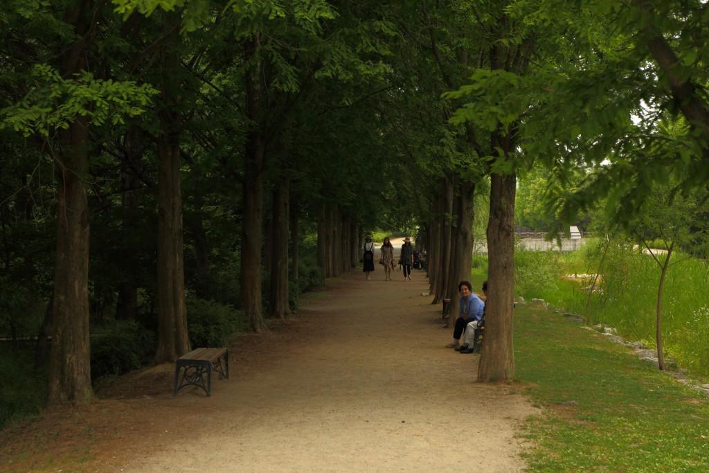 물향기수목원 산책로 모습