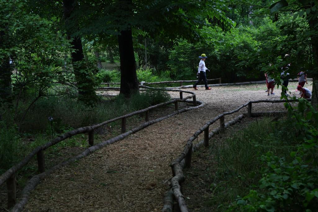 물향기수목원의 시원한 그늘들이 있는 산책로