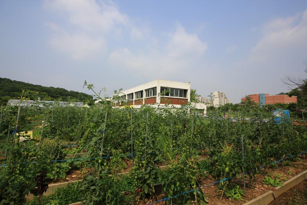 농작물 재배지