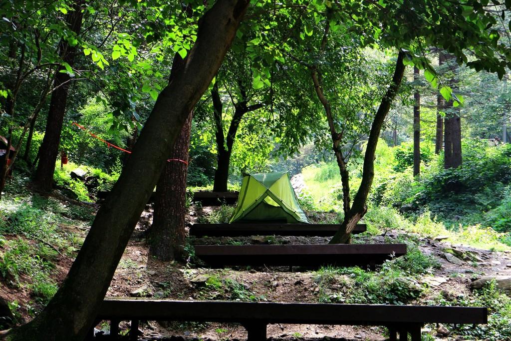 양평 중미산 국립중미산자연휴양림 캠핑장