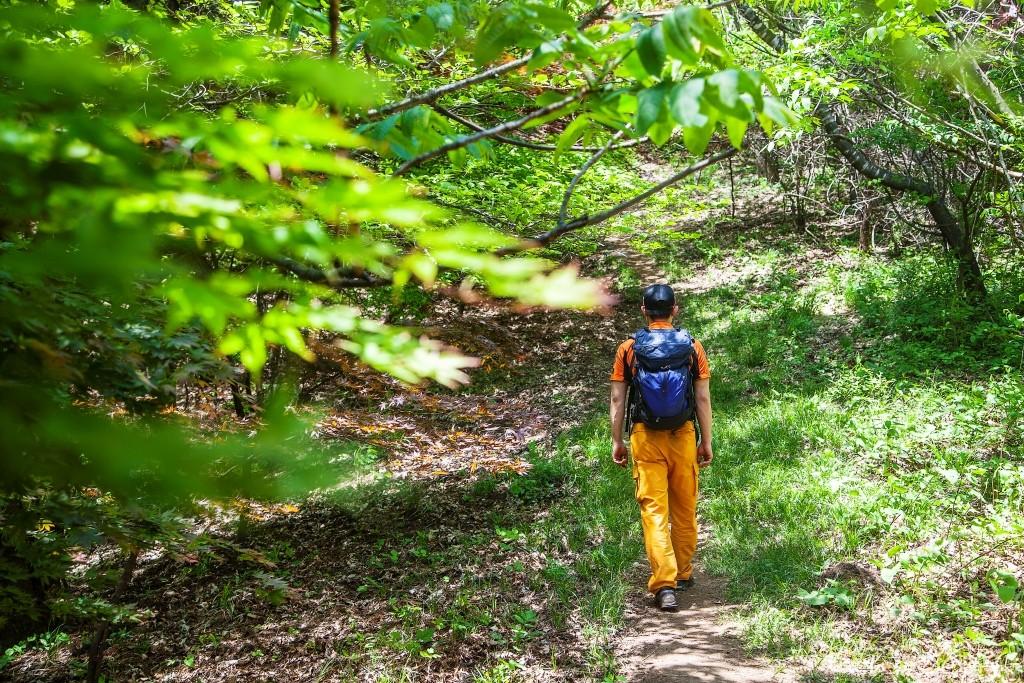 연인산도립공원 숲길에서 트레킹을 하고 있는 사람