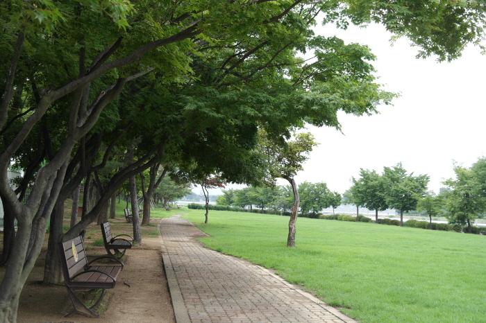 호수 앞 벤치와 잔디밭