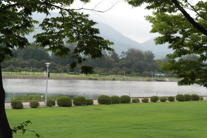 호수가 보이는 모습