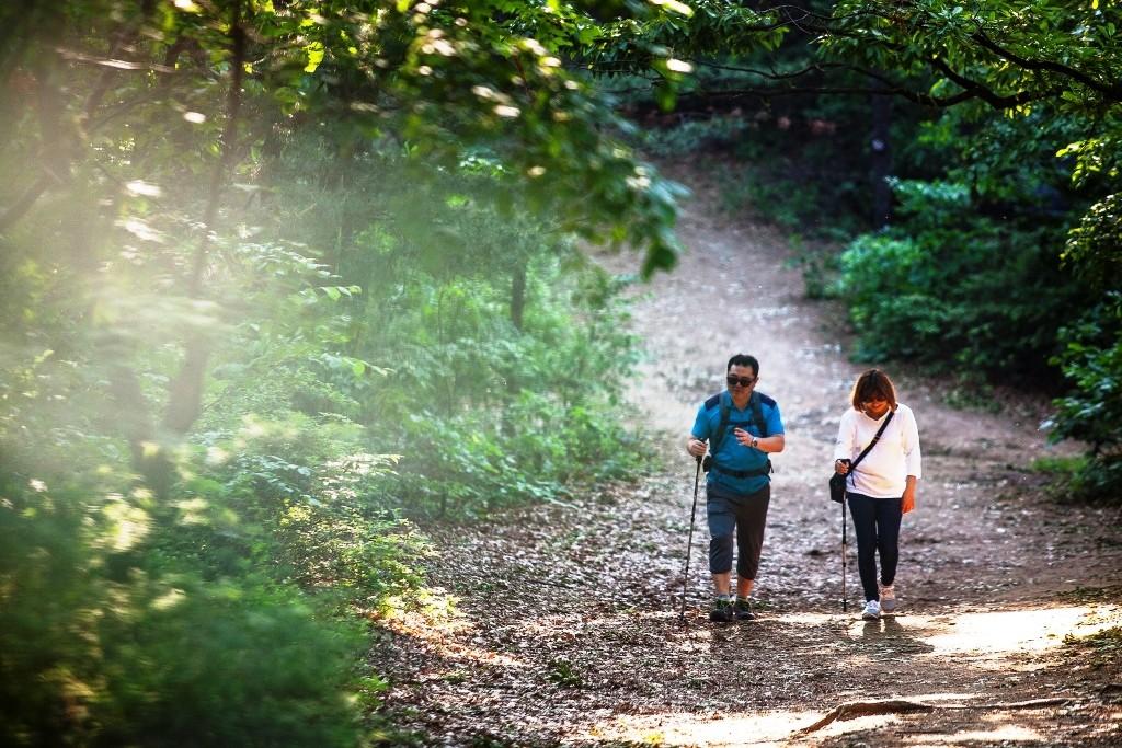 평화누리길 6코스의 숲길을 걷는 두 사람