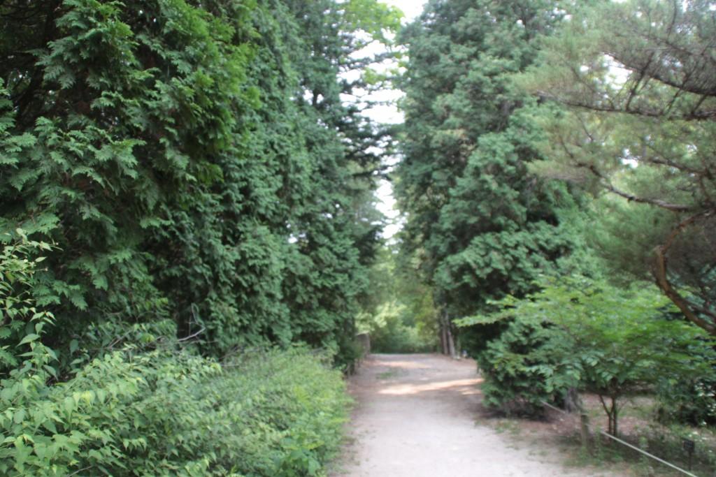 수목원 산책길