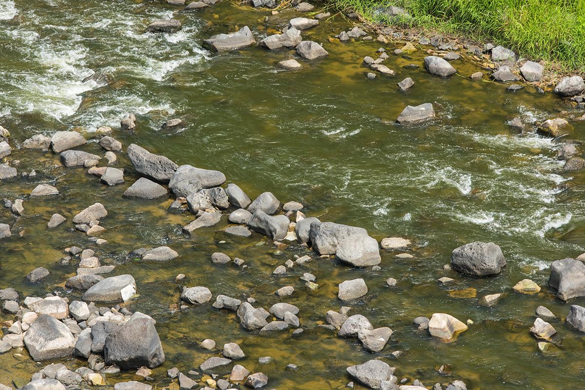 한탄강의 현무암