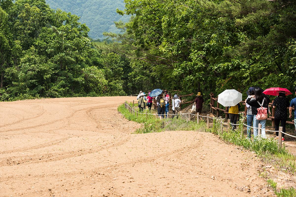 벼룻길을 걷는 사람들
